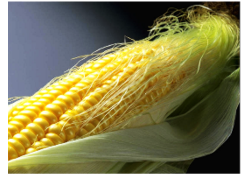 Introduction of Chinese Corn Industry