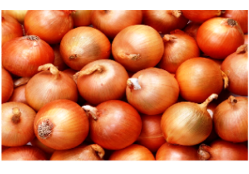 Introduction of Chinese Onions Industry
