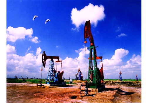 Introduction of China Oil Industry